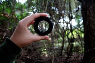 A new lens on leadership