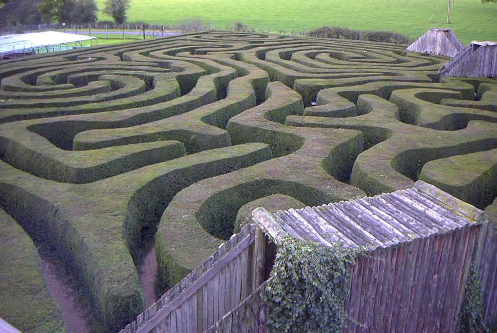Maze runner: Negotiating and thriving in the matrix organization