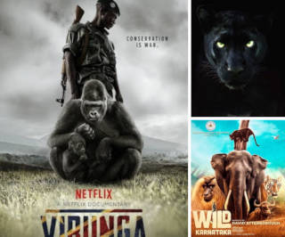 FF Recommends: Six wildlife documentaries
